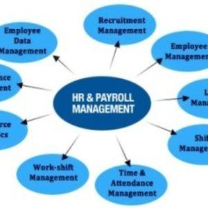 HR Management System Oman   Best Payroll Software Oman